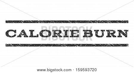 Calorie Burn watermark stamp. Text caption between horizontal parallel lines with grunge design style. Rubber seal gray stamp with unclean texture. Vector ink imprint on a white background.