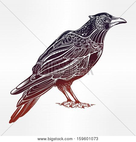 Detailed hand drawn raven bird. Isolated Vector illustration. Tattoo art, spirituality, boho, magic symbol. Witchcraft animal, mystic tribal element for your use.