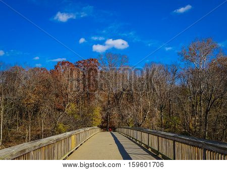 Wooden Bridge In The Fall