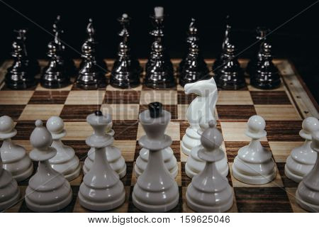 white horse isolated on background chess pieces