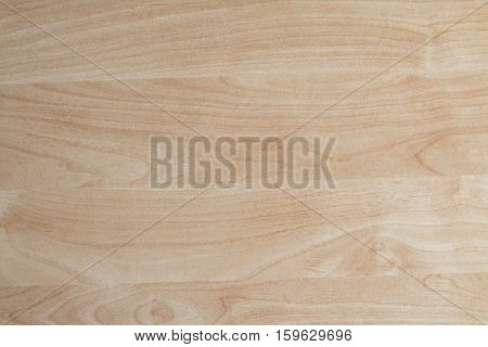 Beech wood texture polished with smooth grain