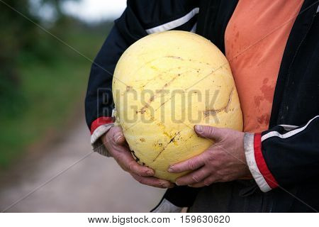 The man is holding a pumpkin, Old man's hands
