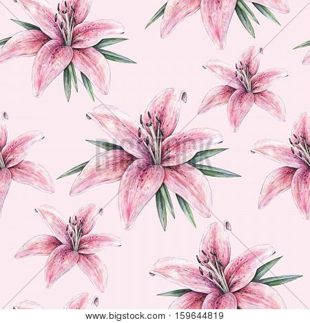 Pink lily flowers isolated on pink background. Watercolor handwork illustration. Drawing of blooming lily with green leaves. Seamless pattern with lilies for design.
