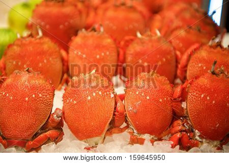 Fresh Seafood crab on ice in buffet restaurant