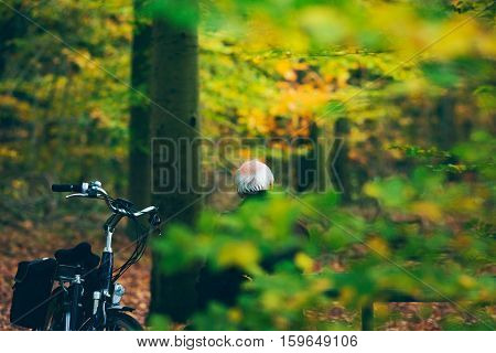 Senior Man With Bicycle Resting On Bench In Autumn Forest.