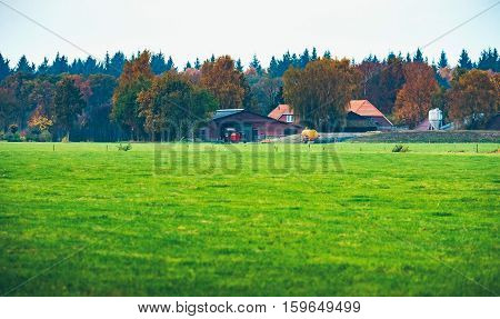 Dutch Farm With Field In Front And Autumn Forest In The Background. Exel. Achterhoek. Gelderland. Th