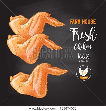 Grilled chicken wings Top view on the blackboard. Isolated vintage vector isolated sketch hand drown