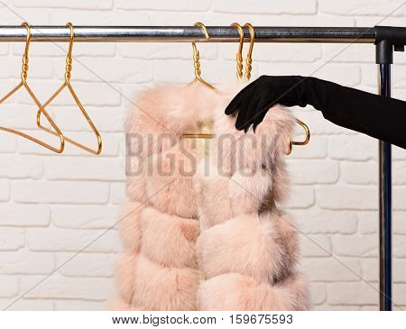 female hand in black velvet glove tacking fashionable luxurious waist coat of beige fur from rack on golden hangers on brick wall studio background