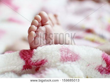 Newborn´s Feet