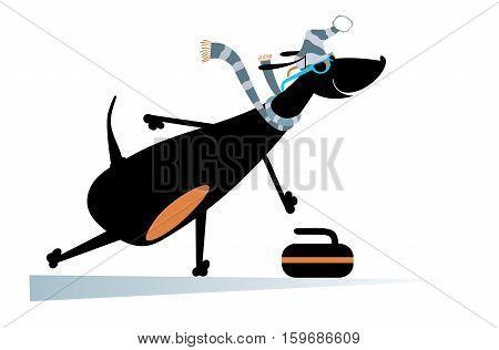 Dog plays curling. Cartoon dachshund a curling player illustration