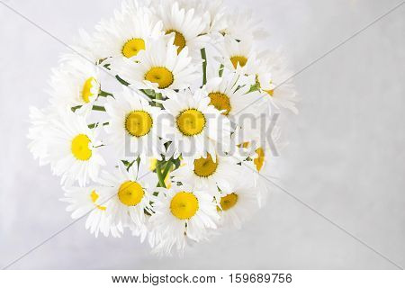 Bouquet of white daisies on a light gray background. Still life with colorful flowers. Fresh daisies Place for text. Flower concept. Fresh spring bouquet. Summer Background. Copyspace