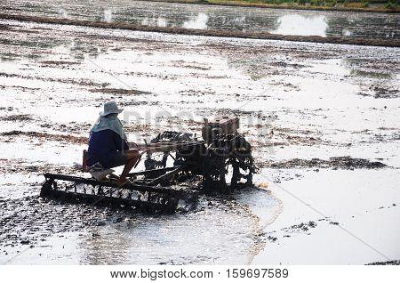 Farmer using tiller machine in rice field