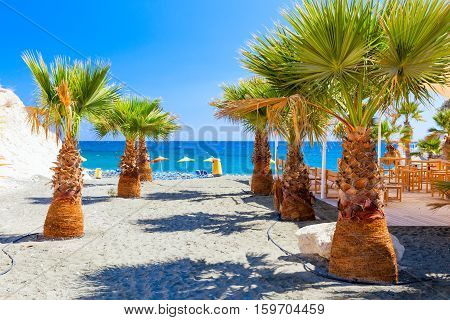 Palms, Sea And A Beautiful Beach Near Governors Beach, Cyprus.