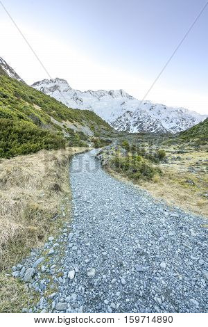 Trail through tussock in Hooker Valley section of a track leading to Aoraki Mount Cook highest peak of Southern Alps an icon of New Zealand partially covered in clouds