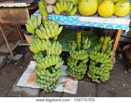 KANCHANABURI THAILAND - NOVEMBER 26: bunch of bananas sold in a market on November 26 2016 in Kanchanaburi Thailand