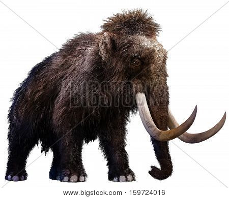 An adult Mammoth from prehistoric times 3D illustration