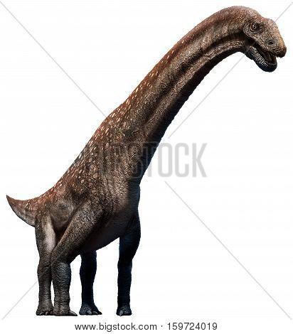 Titanosaurus from the cretaceous era 3D illustration