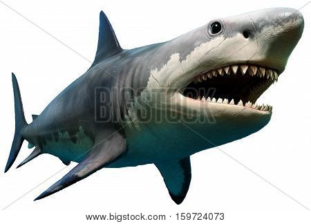 A large prehistoric Megalodon shark 3D illustration