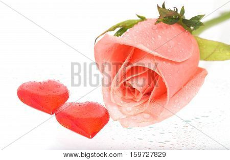 Rose with drops of water and two hearts nearby. A pink rose with dew drops on a white background. Near a rose two red hearts from glass