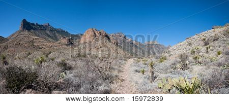 Entrance of Juniper Canyon in the Chisos
