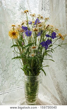 Bouquet of wild flowers - daisies and Handbell standing on the window
