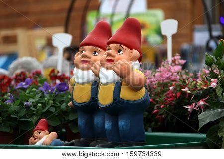 Garden gnomes / Decoration in the garden