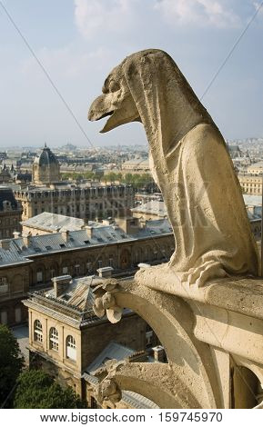 Close-up of gargoyle on the top of Notre-Dame de Paris