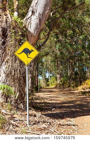 A roadside kangaroo warning sign next to a gravel road passing through indigenous forest near the town of Denmark in Western Australia.