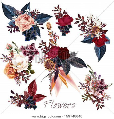 Big collection of vector roses and leafs for design