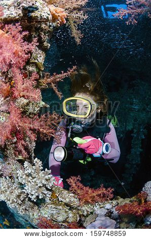 Diver Exploring Soft Corals of a Shipwreck