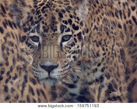 Digital Painting of Leopard Background