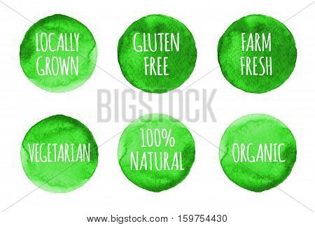 Natural, Organic Food, Bio, Eco Labels And Shapes On White Background. Hand Drawn Watercolor Stains