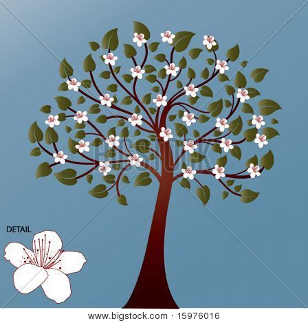 summer blossom tree
