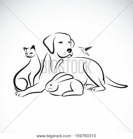 Vector group of pets on white background. Dog Cat Humming bird Rabbit