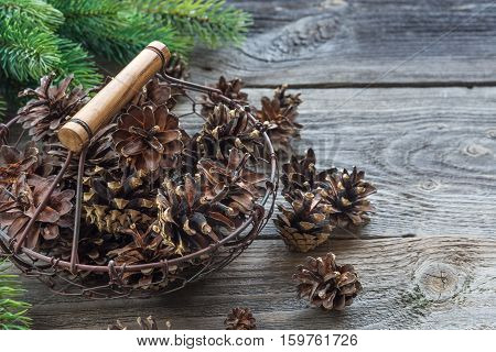 Christmas concept: full basket of pine cones and spruce branches on the background of old unpainted wooden boards. Christmas wallpaper