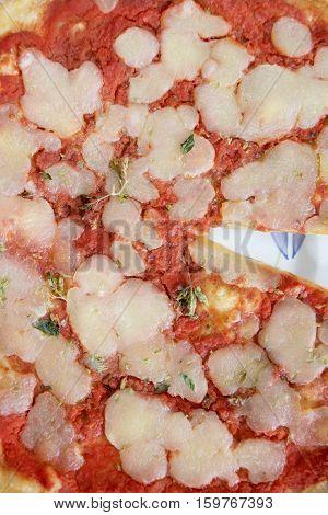 neapolitan pizza with mozzarella and tomato sauce