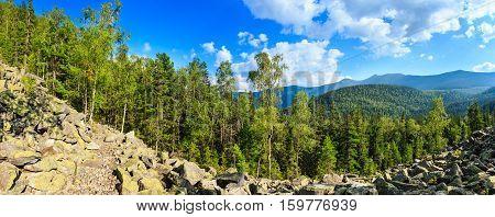 Summer Mountain Panorama (carpathian, Ukraine).