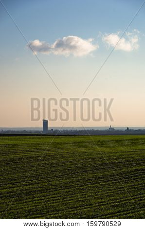 Green agricultural fields at sunny autumn day, north Serbia