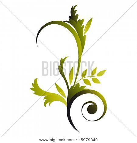 isolated elegant foliage
