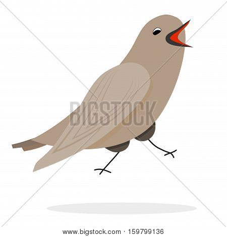 Singing nightingale character. Vector bird illustration animal