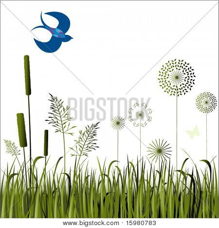 grasses flowers and bird