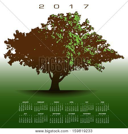 A large glorious old oak tree 2017 calendar in full leafage