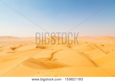 In Oman Old Desert  Dune