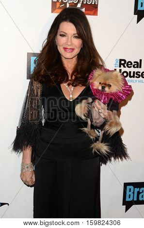 LOS ANGELES - DEC 2:  Lisa Vanderpump at the
