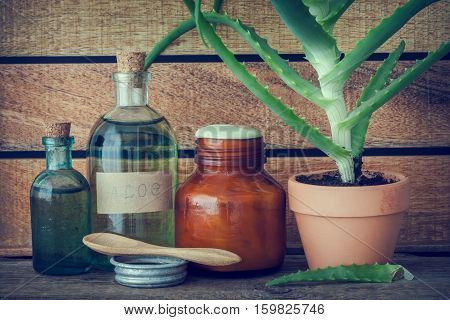 Aloe Plant In Flowerpot, Bottle Of Organic Aloe Vera Essence, Cream Or Ointment And Other Products O