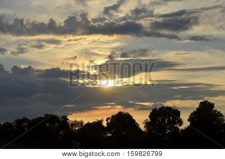 Horizontal photo of Sunset in the forest