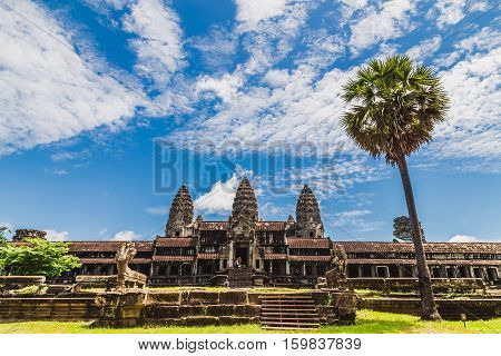 The famous Angkor wat temple with a palm tree in the foreground
