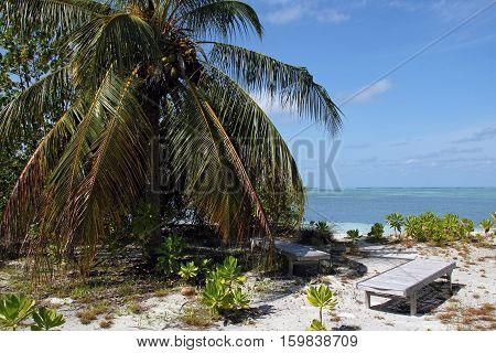Deckchairs on a Tropical Beach. Bodufinolhu (Fun Island) South Male Atoll Maldives