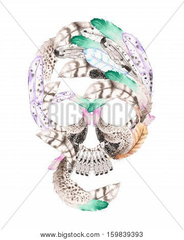 Skull from watercolor feathers illustration, hand drawn isolated on a white background