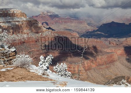 the snow covered landscape in winter at the grand canyon south rim